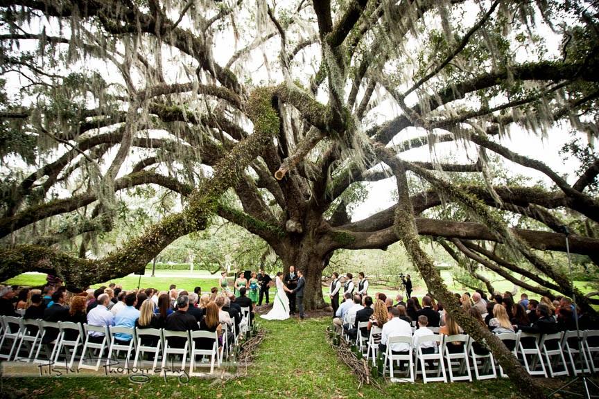 Orlando Science Center: Nature Wedding: Tiffany & Kyle