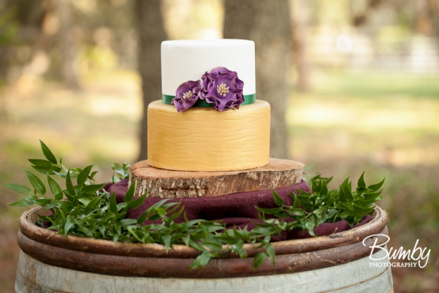 Bumby Photography, Private Location, A Chair Affair, Everything Cake