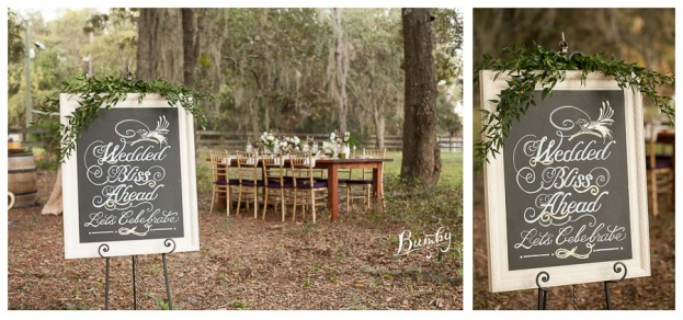 Bumby Photography-A Chair Affair-Wedding Chalk Board-Rustic Glam Wedding Photo Shoot-Orlando Weddings