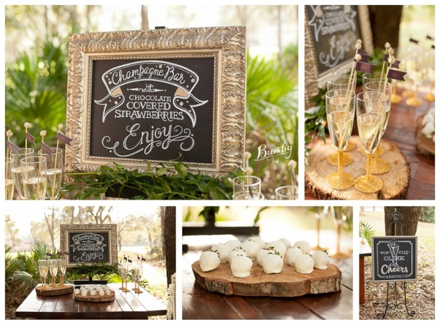 Bumby Photography-A Chair Affair-Wedding Chalk Boards Chocolate Covered Strawberries-Rustic Glam Wedding Photo Shoot-Orlando Weddings