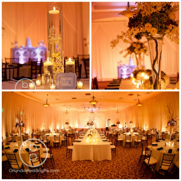 Lake Mary Events Center Ashley And Brendan A Chair Affair Inc