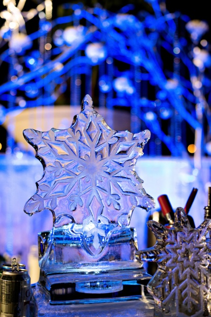 Ice, The Knot Market Mixer, Kristen Weaver Photography, A Chair Affair