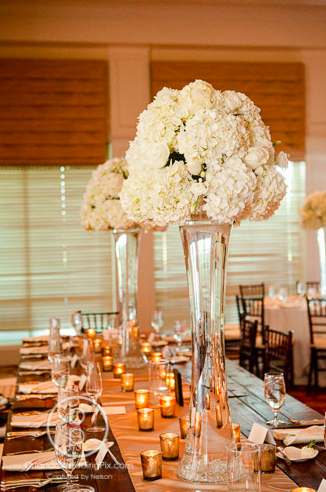 Centerpiece, Orlando weddings, Interlachen Country Club, Orlando Wedding Pix, A Chair Affair rentals
