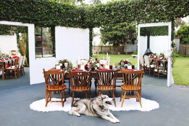 table view,Vine and Light Photography, The Acre, Winter Styled Shoot, A Chair Affair Event Rentals