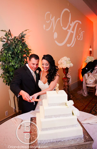 Wedding Cake Ideas 2, Orlando Wedding Pix, Rosen Shingle Creek Resort, A Chair Affair Event Rentals, Orlando Chair Rentals