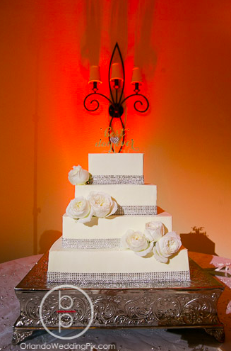 Wedding Cake Ideas, Orlando Wedding Pix, Rosen Shingle Creek Resort, A Chair Affair Event Rentals, Orlando Chair Rentals