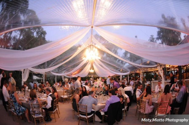 Misty Miotto Photography, Paradise Cove, A Chair Affair event rentals, Orlando chair rentals, gold Chiavari chairs, tented reception