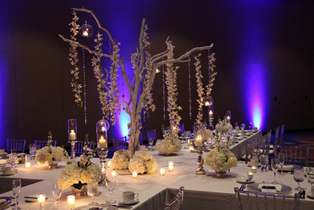Rosen-Centre-Tab-McCausland-Photography-Silver-Glitter-Class-Chargers-Crystal-Trees-Flatware-A-Chair-Affair-Event