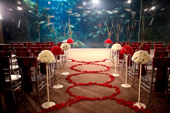 Florida Aquarium Tropical Wedding Ideas Tank Ceremony E