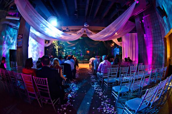 Florida Beach Wedding With Aquarium Reception: Venue Feature: Florida Aquarium