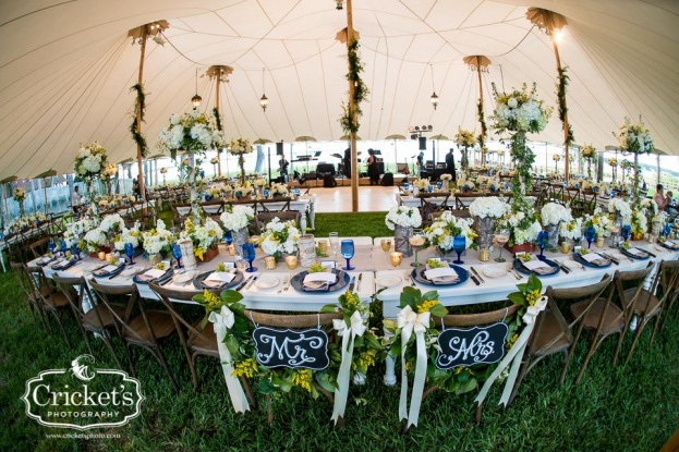 french country chairs reception