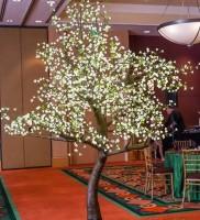 9 Foot Cherry Blossom Tree