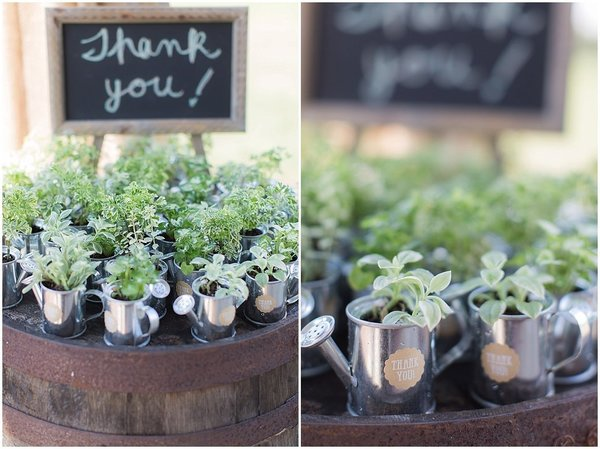 isola farms wedding favors