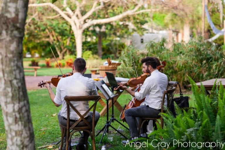 vibrant spring wedding french country chairs musicians