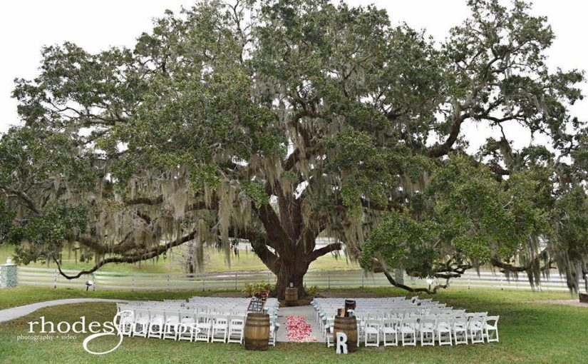 Country Chic Highland Manor Wedding