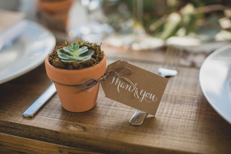 Outdoor Desert Wedding Succulent