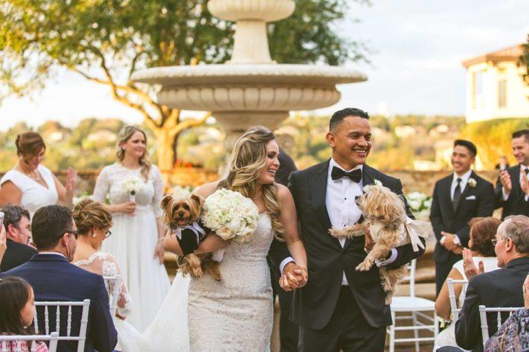 White Bella Collina Wedding Bride Groom Dogs