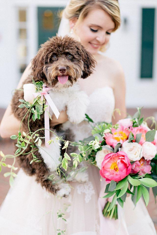 Spring Wedding Inspiration Dog Bride