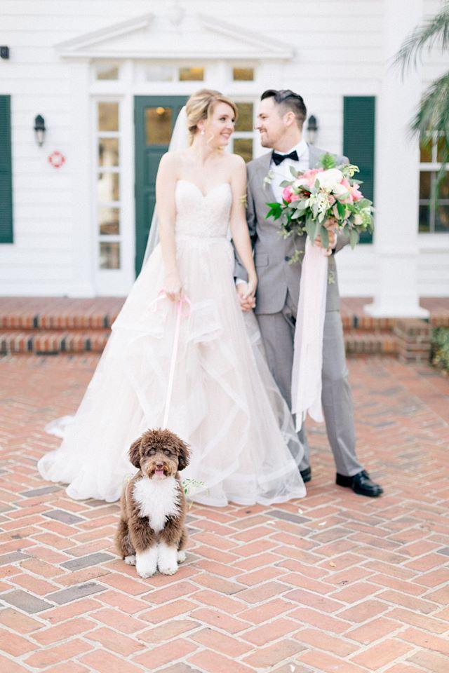 Spring Wedding Inspiration Dog Couple