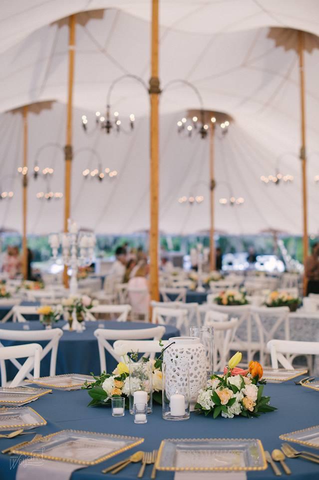 Bartow Tent Wedding A Chair Affair french country chair