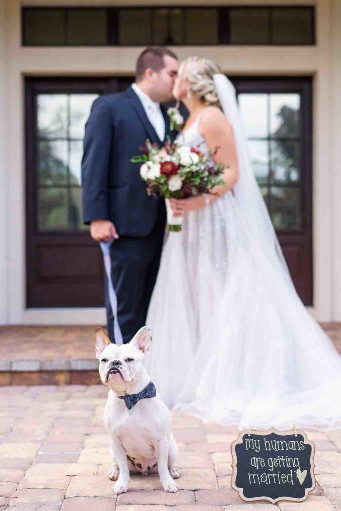 navy and burgundy wedding A Chair Affair newlyweds with dog Ernie