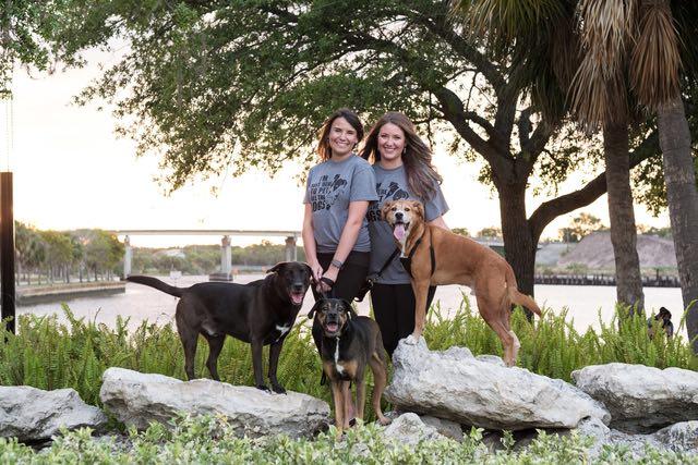 Fairytail Pet Care