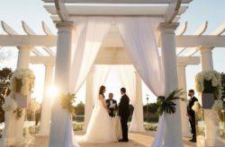 Ritz Carlton Orlando Modern Wedding