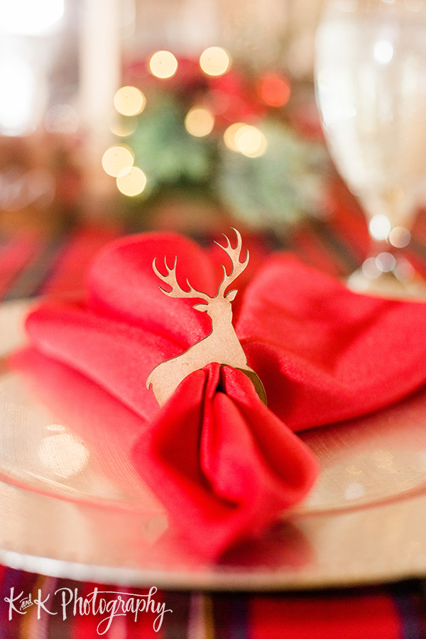 Carriage House- Christmas Wedding-A Chair Affair