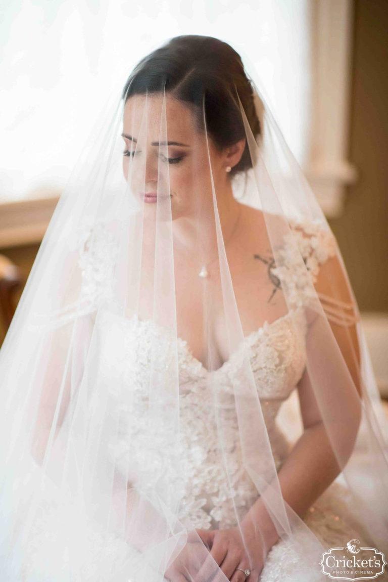 Gorgeous Bride with Veil