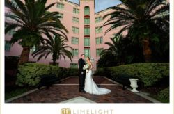 Sophisticated Silver Wedding at Vinoy Renaissance